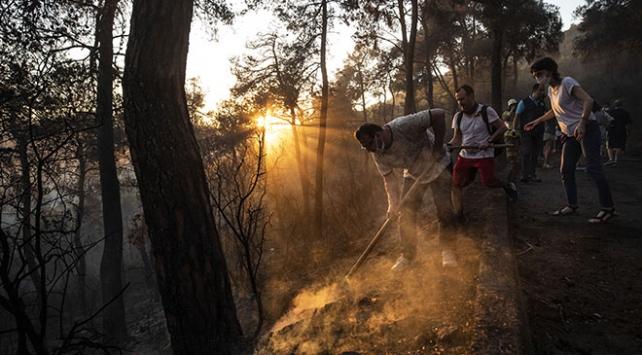 Heybeliada'daki orman yangınıyla ilgili 1 şüpheli tutuklandı