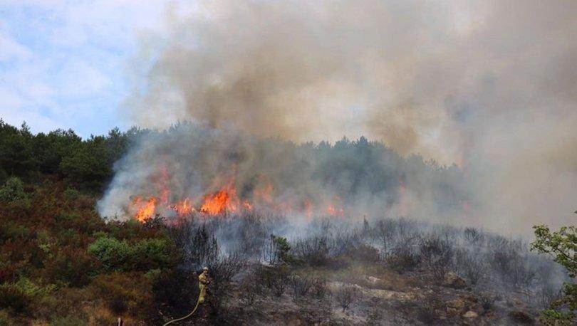 Aydos Ormanı'nda yeni yangın