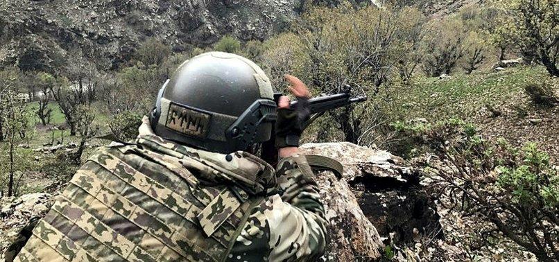 Zeytin Dalı bölgesinde 3 terörist gözaltına alındı
