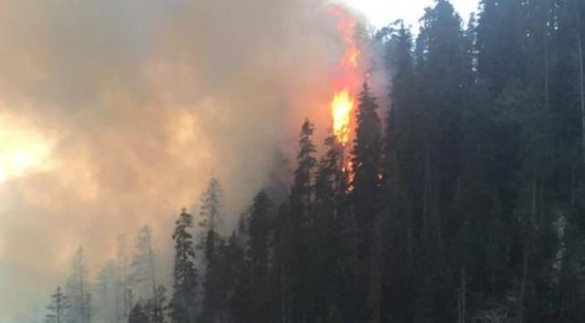 4 hektarlık alanın zarar gördüğü orman yangını söndürüldü