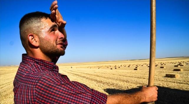 Doğu Anadolu'da sıcaklıklar artacak