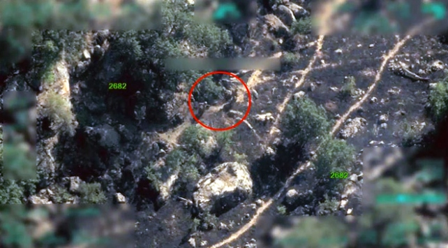 PKK sözde yöneticinin etkisiz hale getirildiğini örgütten gizlemiş