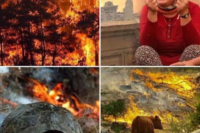 Muğla'da Yangın Nedeniyle Bazı Köyler Boşaltılıyor